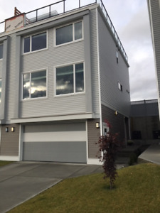 Beautiful Brand New Home For Rent