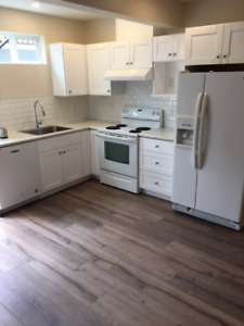 BRAND NEW basement suite for rent - new subdivision The Meadows