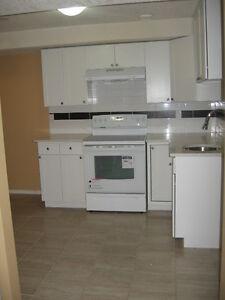 TWO BEDROOMS BASEMENT SKY VIEW  N.E , FOR RENT, AVIL,SEPT 1ST
