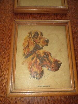 VTG Embossed Chalk Drawing WOOD Framed Mabel M. GEAR IRISH SETTERS Dog Art Print