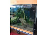 Juwell Aquarium - free