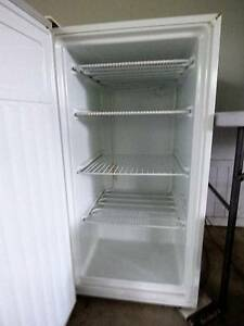 Upright freezer Canungra Ipswich South Preview