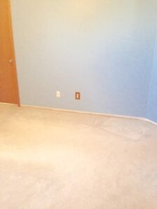 "Neutral colour (light blue) low pile carpet (12'-0""W x 12'-10""L)"