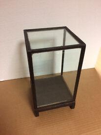 Darkwood & Glass Display Case
