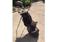 Set of Hippo Golf Clubs with Bag and Accessories