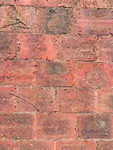 Paving Bricks - Free! Quinns Rocks Wanneroo Area Preview