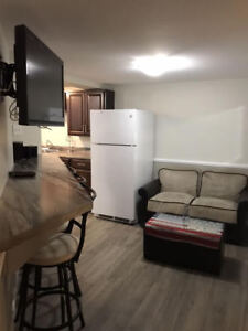 Full Basement or Rooms for Rent