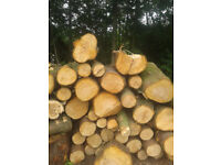 BULK FIREWOOD for wood burners, stoves and open fireplaces, dry and seasoned