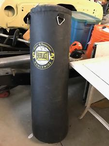 Kick/ punching bag