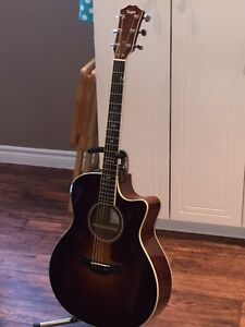 Taylor 716ce. Is it time for you to own a pro quality Guitar?