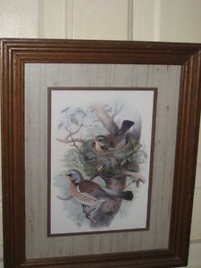 VINTAGE FRAMED BIRD PICTURE, BROWN TONES, MINT COND!