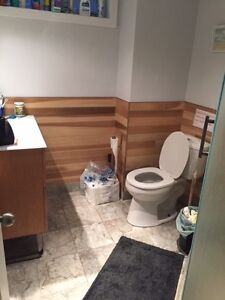 1 room for student rental in Old North area London Ontario image 5