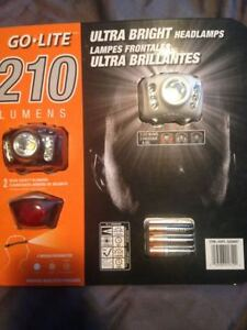 HeadLamps (2) with blinkers