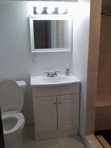 LRT Professionals Mature Students Welcome - Quiet Private Clean Kitchener / Waterloo Kitchener Area image 5