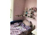 SINGLE/DOUBLE ROOMS TO LET IN HENDON CENTRAL NEAR MDX UNIVERSITY!
