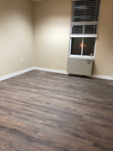 Complete renovated 2 bedrooms apartment near Metro Monk St