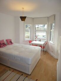 Lovely bright and sunny large self contained studio, FREE WIFI, available end of Jan!