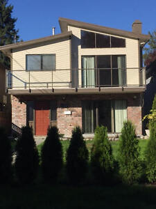 North Vancouver 5 bedroom 2 kitchen home renovated lower capilan