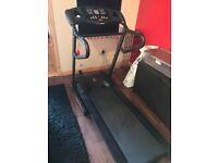 Hammer Treadmill