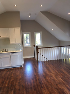 Attention Mature Students - Executive 2 bedroom loft for rent