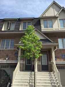 MISSISSAUGA - CREDITVIEW/BRITANNIA - 3BR NEWER TOWNHOME
