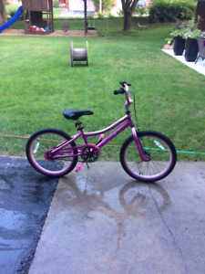 Supercycle Freestyle 20 inch