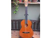 Almeria BM Spanish made classical guitar,new strings, fret polish,fretboard conditioned