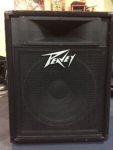 Vintage US made Peavey PA Speaker with 15' driver