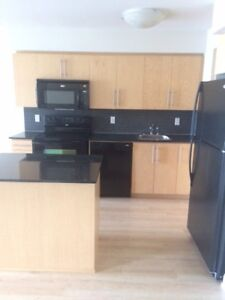 Ultra Ovation - Luxury Condo for Rent