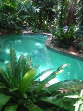 ACRE OF RAINFOREST, BIG HOME IN COCONUT GROVE. POOL. ANTIQUES. Coconut Grove Darwin City Preview