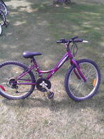 PRICES REDUCED - SERVICED and Tuned BIKES