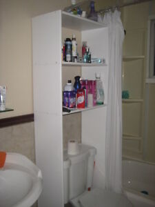 Bathroom organizer mint condition Cambridge Kitchener Area image 1