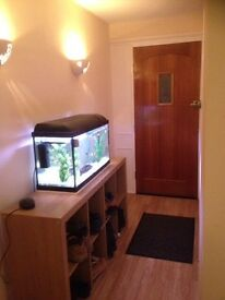 Single room for rent in basildon