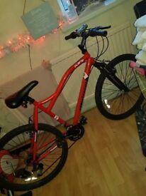 """Muddyfox 26"""" bike"""