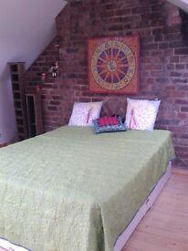 Very Spacious Bedroom L13 All bills+cleaner inc