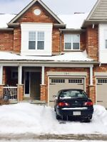 Room Rental Available May 1st on Arkell – Inclusive
