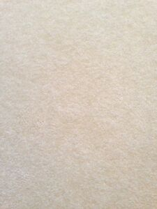 "Neutral colour (light blue) low pile carpet (4'-3"" W x 7'-5"" L)"