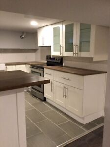 Beautiful Renovated 2bd South Walkerville Apartment