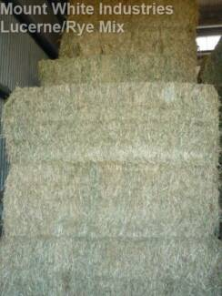 PRIME LUCERNE/RYE GRASS MIX JUMBO HAY BALES 8X4X3-Approx 600kg