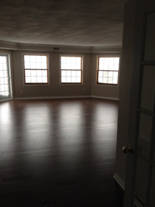 Beautiful spacious condo perfect for a professional couple