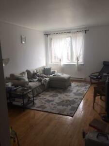 3.5 Apartment for Rent - Available July 1st
