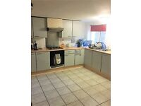7 Bedroom Student Property available September 2017