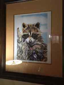 water colour Raccoon Limited Edition Print.  Local Artist London Ontario image 1