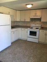 Napanee 2 bdrm available Feb 1