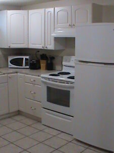 3 bedrooms down town fully furnished