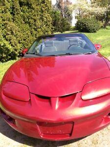 1998 Pontiac Firebird convertible Convertible