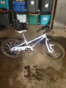 For sale Child's Bike asking $50 obo.