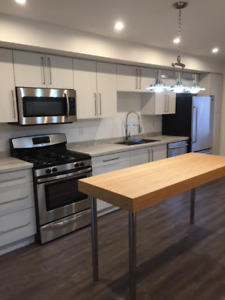 RENOVATED Top to Bottom - 3 Bedroom Townhouse in North End NF