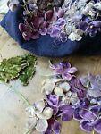 sweet*violets