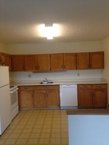 Bright spacious 1and 2 bedroom apartments Regina Regina Area image 7